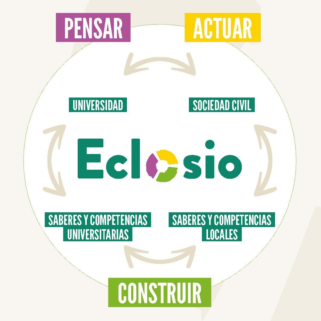 Eclosio_Pensar, actuar y construir juntos