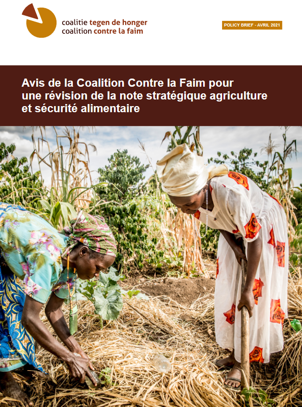CCLF-PolicyBrief-Avril2021-cover